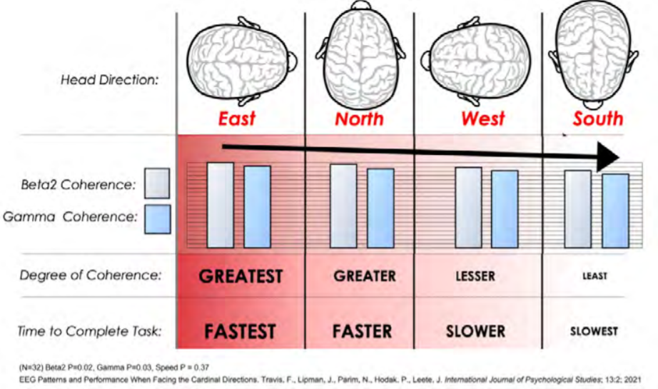 The correlation between head direction, brain coherence, and time to complete a task